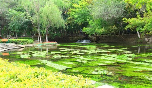 新疆水磨溝風景區使用掌門神安檢設備